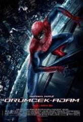 İnanılmaz Örümcek Adam (2012) afişi