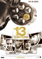 13 (2010) afişi