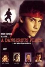 A Dangerous Place (1995) afişi
