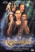 A Light ın The Forest (2002) afişi