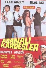 Adanalı Kardeşler (1972) afişi