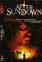 After Sundown (2006) afişi