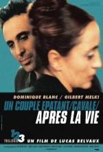 After The Life (2002) afişi