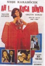Ah Koca Dünya (1972) afişi