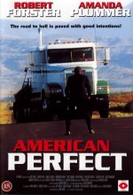 American Perfekt (1997) afişi
