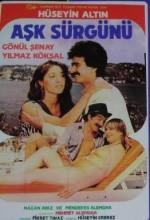 Aşk Sürgünü (1984) afişi