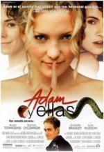 Aşkmatik (2000) afişi