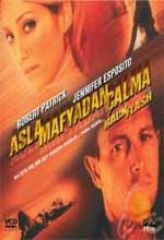 Asla Mafyadan çalma (2001) afişi