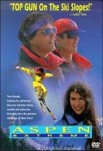 Aspen Extreme (1993) afişi