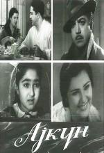 Aygün (1960) afişi