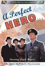 A Perfect Hero (1991) afişi