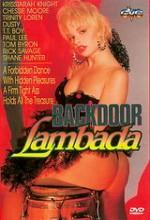 Backdoor Lambada (1990) afişi