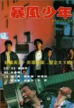 Bao Feng Shao Nian (1991) afişi