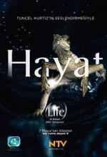 Bbc Hayat - Memeliler (2009) afişi