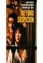 Beyond Suspicion (1994) afişi