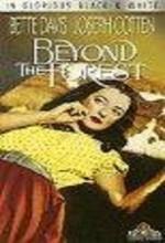 Beyond The Forest (1949) afişi