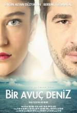 Bir Avuç Deniz (2011) afişi