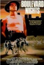 Boulevard Nights (1979) afişi