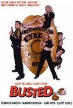 Busted (1997) afişi