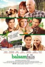 Balsam Falls (2014) afişi