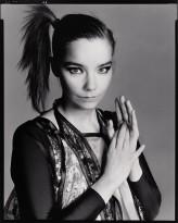 Björk profil resmi