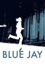 Blue Jay (2015) afişi