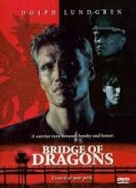 Bridge Of Dragons (1999) afişi