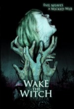Cadı Uyandırmak (2010) afişi