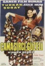 Çamaşırcı Güzeli (1966) afişi