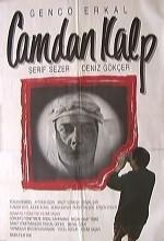 Camdan Kalp (1990) afişi
