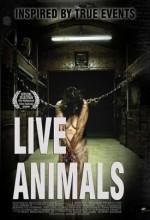 Canlı Hayvan(ı) (2008) afişi