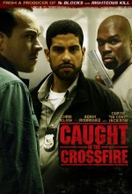Caught In The Crossfire (2010) afişi