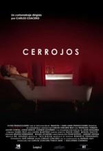 Cerrojos (2004) afişi