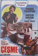 Çeşme (1976) afişi