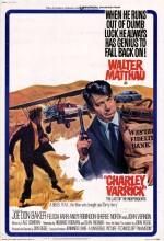 Charley Varrick (1973) afişi
