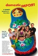 Çılgın Dadı (2006) afişi