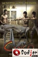Cinko (2010) afişi