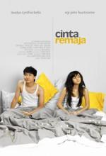 Cinta Remaja (2006) afişi