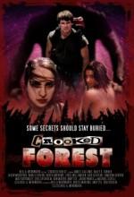 Crooked Forest (2006) afişi