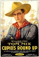 Cupid's Roundup (1918) afişi