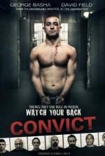 Convict (2014) afişi
