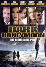 Dark Honeymoon (2008) afişi