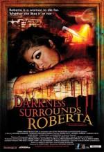 Darkness Surrounds Roberta (2008) afişi
