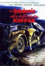 Das Geheimnis Der Schwarzen Koffer (1962) afişi