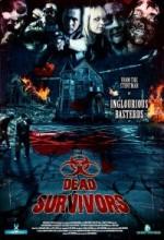 Dead Survivors (2010) afişi