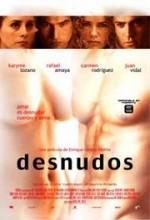 Desnudos (2004) afişi
