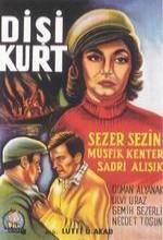 Dişi Kurt (1963) afişi