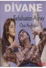 Divane (1979) afişi