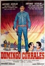 Domingo Corrales (1988) afişi