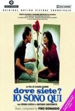 Dove Siete? ıo Sono Qui (1993) afişi